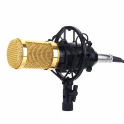 Microfon Profesional BM800 Techstar®, Inregistrare Vocala si Karaoke, Gold Negru