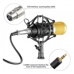 Microfon Profesional Inregistrare Vocala Si Karaoke, Gold Negru WG-500II
