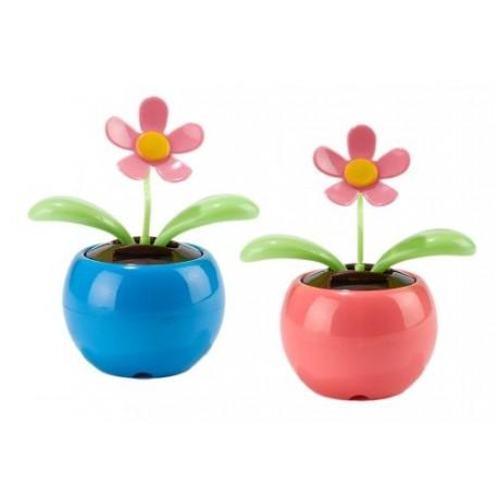 Floare Ghiveci Produs de Test